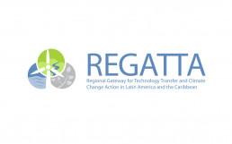 cagefish - regatta