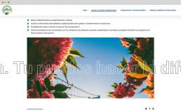 cagefish-webdesign-agentur-berlin-me-comprometo-laufschrift